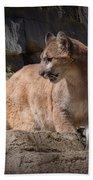 Mountain Lion On The Prowl Bath Towel