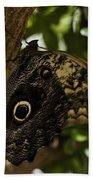 Mournful Owl Butterfly Bath Towel