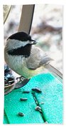 Mouth Full Chickadee Bath Towel