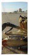 Mr. Crabs Bath Sheet by Valeria Donaldson