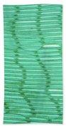 Mussel Gill Lm Bath Towel