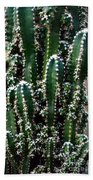 Nature's Cactus Abstract 2 Bath Towel