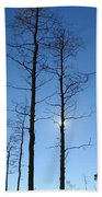 New Mexico Series - Bare Tree Sky  Bath Towel