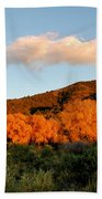New Mexico Series - Cloud Over Autumn Bath Towel