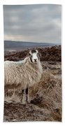 North York Moors Sheep Bath Towel
