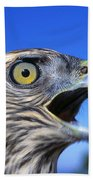 Northern Goshawk With Open Beak Bath Towel