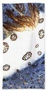 Nudibranch Feeding On A Sponge, Papua Bath Towel