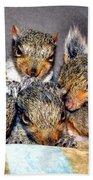 Nut Brothers Bath Towel