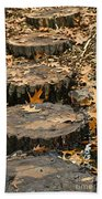 Oak Creek Steps Bath Towel