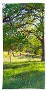 Oak Trees In The Spring Bath Towel