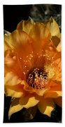 Orange Echinopsis Flower  Bath Towel