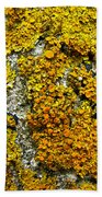 Orange Lichen - Xanthoria Parietina Bath Towel