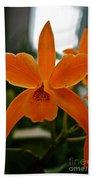 Orange Sherbert  Orchid Bath Towel