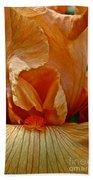 Orange Sherbert Bath Towel