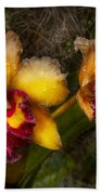 Orchid - Cattleya - Dripping With Passion  Bath Towel