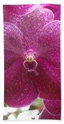 Orchid Cluster Bath Towel