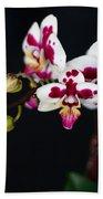 Orchid Flowers Against Black Background Bath Towel