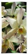 Orchid Iwanagara 9854 Bath Towel