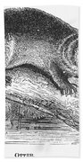Otter, 1873 Bath Towel