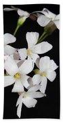 Oxalis Flowers 3 Bath Towel