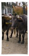Oxen And Handler Bath Towel