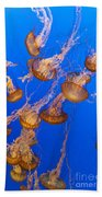 Pack Of Jelly Fish Bath Towel