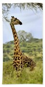 Painted Giraffe Bath Towel