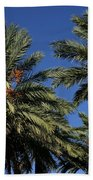 Palms 9838b Bath Towel