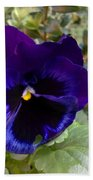 Pansy Bath Towel