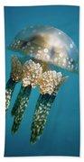 Papuan Jellyfish Mastigias Papua, Palau Bath Towel