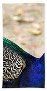 Parading Peacock Bath Towel