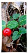 Partridge Berry Berry - Mitchella Repens Bath Towel