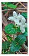 Partridge Berry Flower - Mitchella Repens Bath Towel