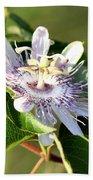 Passion Flower - May Pop Bloom Bath Towel