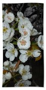 Pear Blooms And Tree Bath Towel