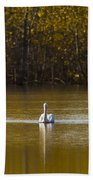 Pelican On Golden Pond Bath Towel