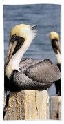 Pelican Pair Bath Towel