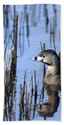 Pied-billed Grebe, Montreal Botanical Bath Towel