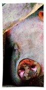 Pig Sleeping Bath Towel