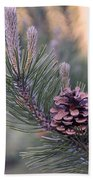 Pine Cone At Sundown Bath Towel
