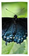 Pipevine Swallowtail Bath Towel