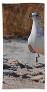 Poised Seagull Bath Towel