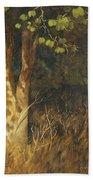 Portrait Of A Tree Trunk Bath Towel