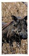 Portrait Of A Warthog Bath Towel