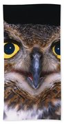 Portrait Of Great Horned Owl Hand Towel