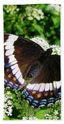 Posing Butterfly Bath Towel