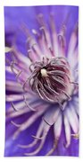 Pretty Purple Clematis Bath Towel