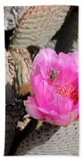 Prickly Pear Cactus Fertilized By Honey Bee Bath Towel