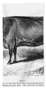 Prize Devon Cow, 1855 Bath Towel