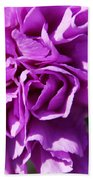 Purple Carnation Bath Towel